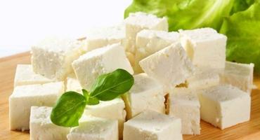 پودر پنیر سفید تیپ 4
